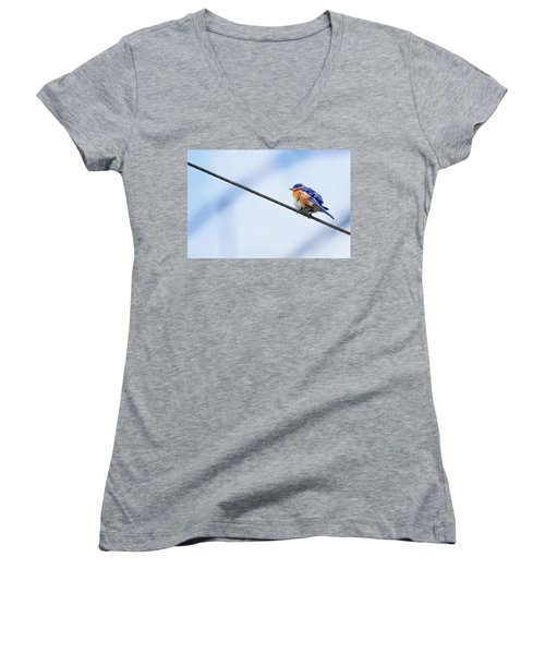 Women's V-Neck T-Shirt (Junior Cut) featuring the photograph Bluebird Of Happiness by Linda Unger