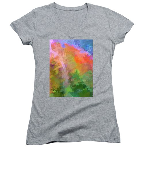 Women's V-Neck T-Shirt (Junior Cut) featuring the photograph Blurry Painting by Wendy McKennon