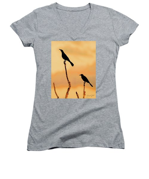Boat Tailed Grackles Women's V-Neck (Athletic Fit)