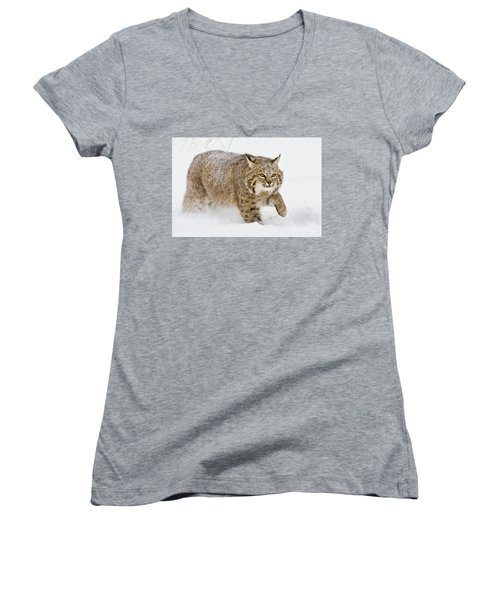 Bobcat In Snow Women's V-Neck T-Shirt (Junior Cut) by Jerry Fornarotto