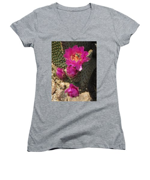 Borrego Springs Bloom 6 Women's V-Neck T-Shirt