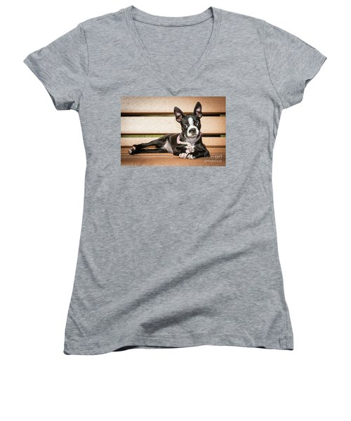 Boston Terrier Puppy Relaxing Women's V-Neck T-Shirt (Junior Cut) by Stephanie Hayes