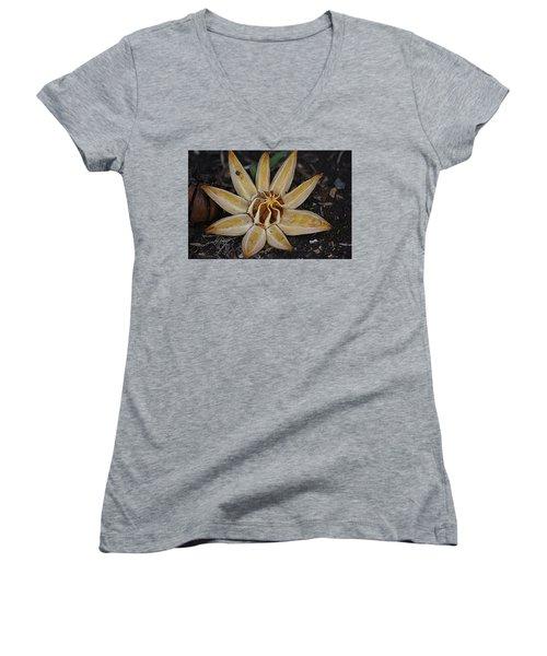 Botanical Garden Seed Pod Women's V-Neck T-Shirt (Junior Cut) by Lori Seaman