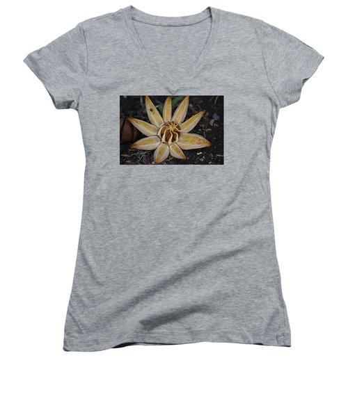Botanical Garden Seed Pod Women's V-Neck T-Shirt