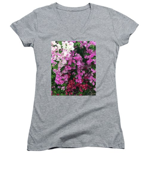 Bougainville Flowers In Hawaii Women's V-Neck T-Shirt (Junior Cut) by Karen Nicholson