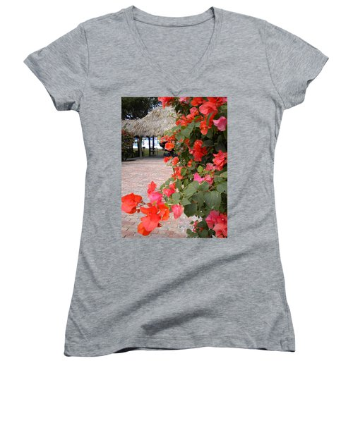 Women's V-Neck T-Shirt (Junior Cut) featuring the painting Bouganvilla 2 by Renate Nadi Wesley