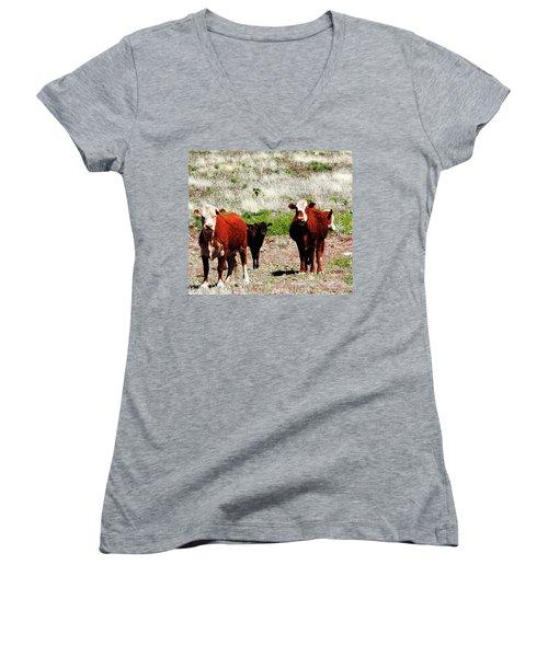 Bovine Women's V-Neck T-Shirt