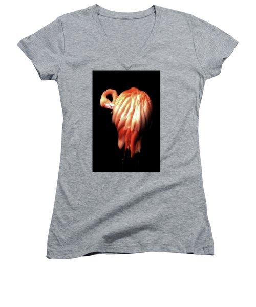 Bowie Flamingo Women's V-Neck (Athletic Fit)