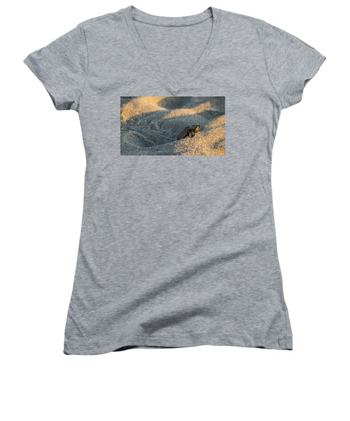 Brave Beginnings Sea Turtle Hatchling Delray Beach Florida Women's V-Neck T-Shirt