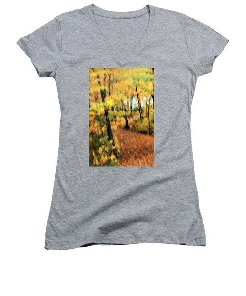 Breeze Women's V-Neck T-Shirt (Junior Cut) by Allen Beilschmidt