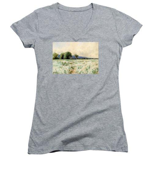 Bricher Alfred Thompson The Daisy Field Women's V-Neck T-Shirt