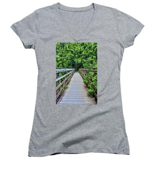 Bridge To Bamboo Forest Women's V-Neck T-Shirt
