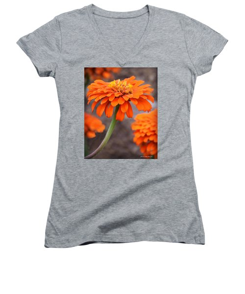 Bright And Beautiful Women's V-Neck T-Shirt (Junior Cut) by Kathy M Krause