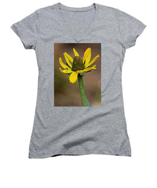Women's V-Neck T-Shirt (Junior Cut) featuring the photograph Bright And Shining by Deborah  Crew-Johnson