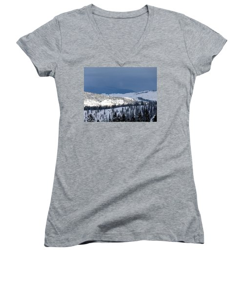 Women's V-Neck T-Shirt (Junior Cut) featuring the photograph Bright Patch Of Sunshine by Will Borden