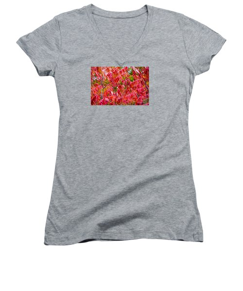 Bright Red Leaves Women's V-Neck