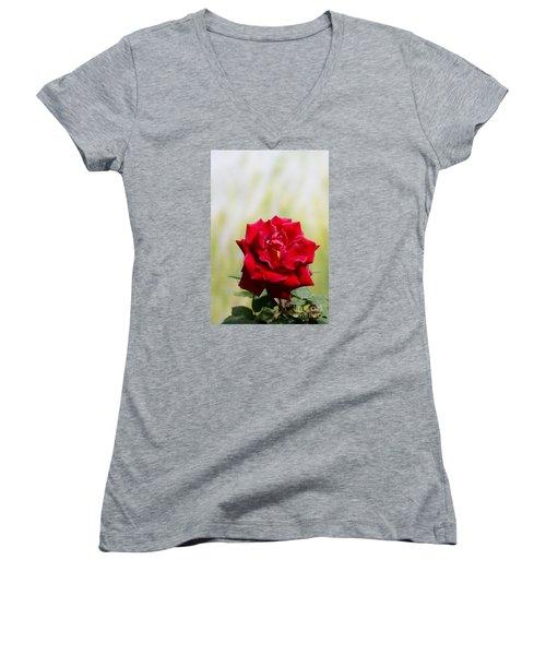 Bright Red Rose Women's V-Neck T-Shirt