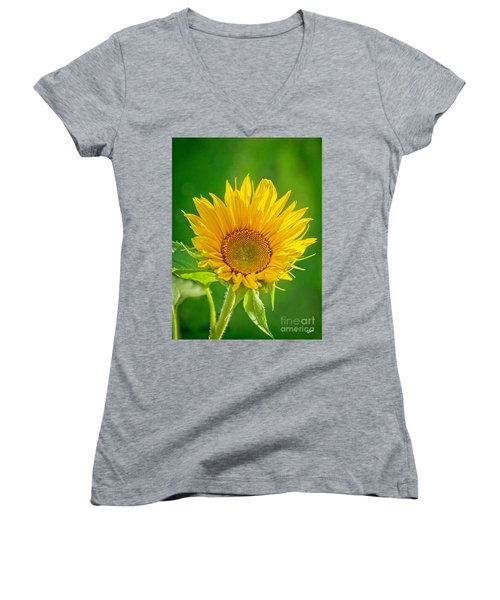 Bright Yellow Sunflower Women's V-Neck T-Shirt
