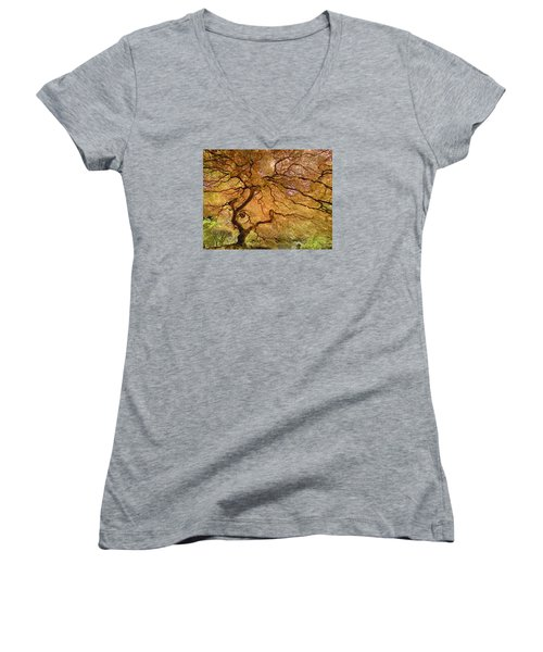 Women's V-Neck T-Shirt (Junior Cut) featuring the photograph Brilliant Japanese Maple by Wanda Krack