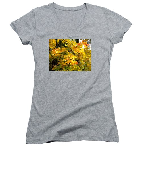 Women's V-Neck T-Shirt (Junior Cut) featuring the photograph Brilliant Maple Leaves by Will Borden
