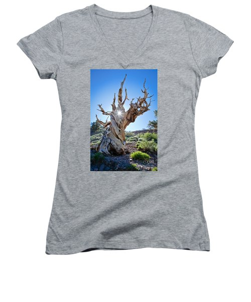 Bristlecone And Sun Women's V-Neck T-Shirt