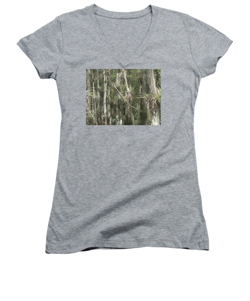 Bromeliads On Trees Women's V-Neck T-Shirt