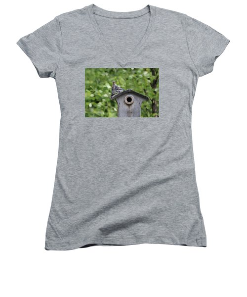 Brother From Another Mother Women's V-Neck