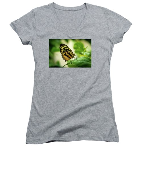 Brown And Black Tropical Butterfly Resting Women's V-Neck (Athletic Fit)