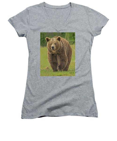 Brown Bear 1 Women's V-Neck (Athletic Fit)
