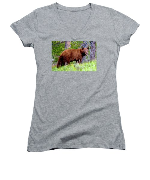 Brown Bear Women's V-Neck