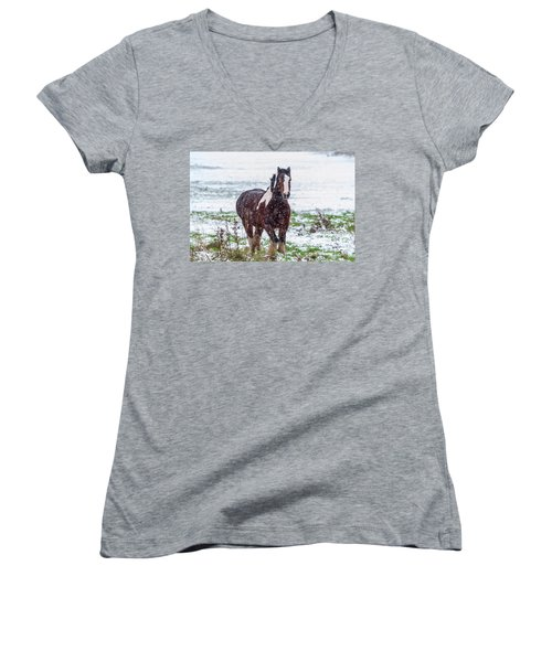 Brown Horse Galloping Through The Snow Women's V-Neck T-Shirt