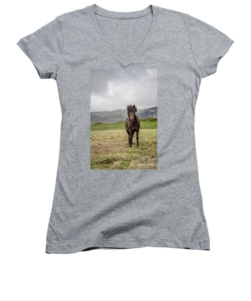 Women's V-Neck T-Shirt featuring the photograph Brown Icelandic Horse by Edward Fielding