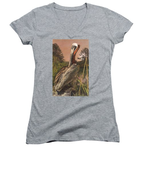 Brown Pelican Women's V-Neck (Athletic Fit)