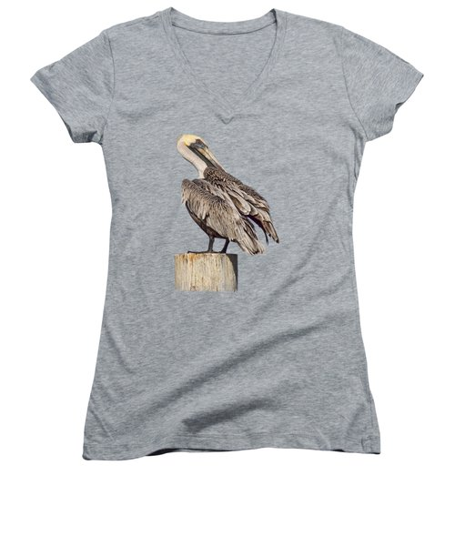 Brown Pelican - Preening - Transparent Women's V-Neck T-Shirt