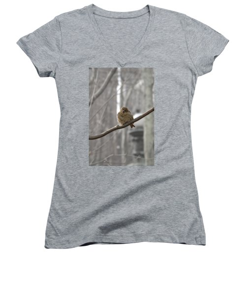 Bryant Park Bird Nyc Women's V-Neck T-Shirt