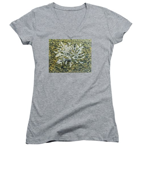 Bryozoan Life Women's V-Neck (Athletic Fit)