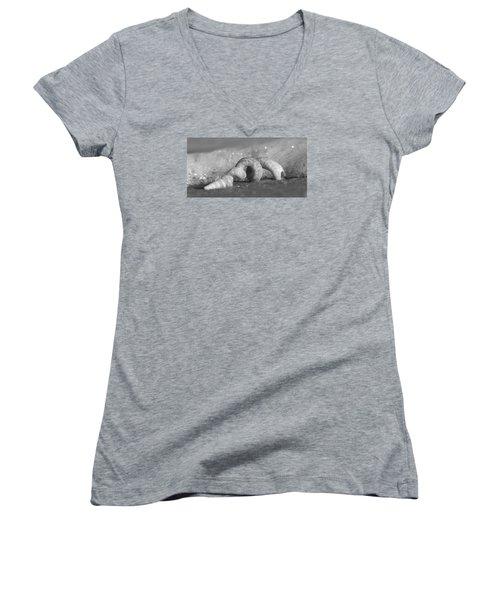 Bubble Bath Women's V-Neck T-Shirt