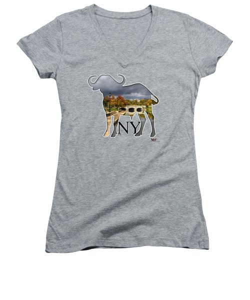 Buffalo Ny Hoyt Lake Women's V-Neck T-Shirt