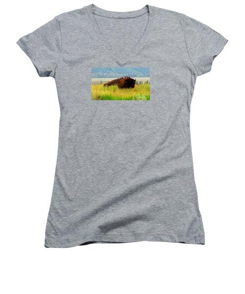 Buffalo Wings Women's V-Neck T-Shirt (Junior Cut) by Janice Westerberg