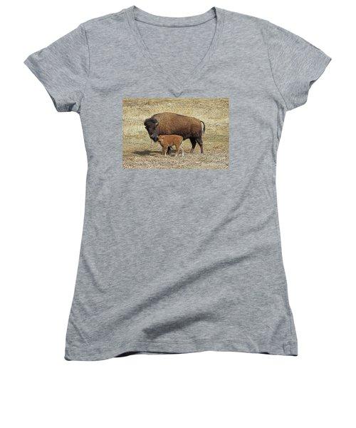 Buffalo With Newborn Calf Women's V-Neck