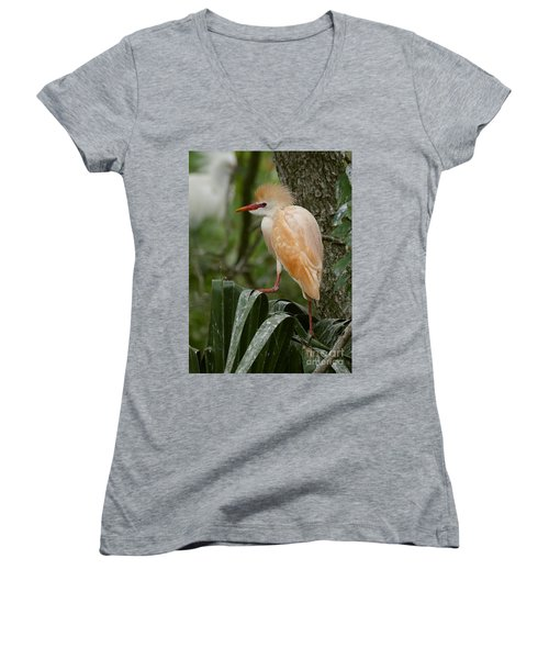 Buffy - The Cattle Egret Women's V-Neck (Athletic Fit)