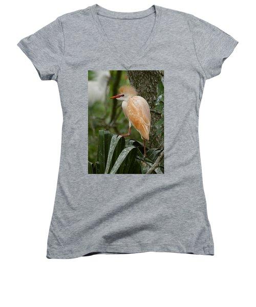 Buffy - The Cattle Egret Women's V-Neck T-Shirt