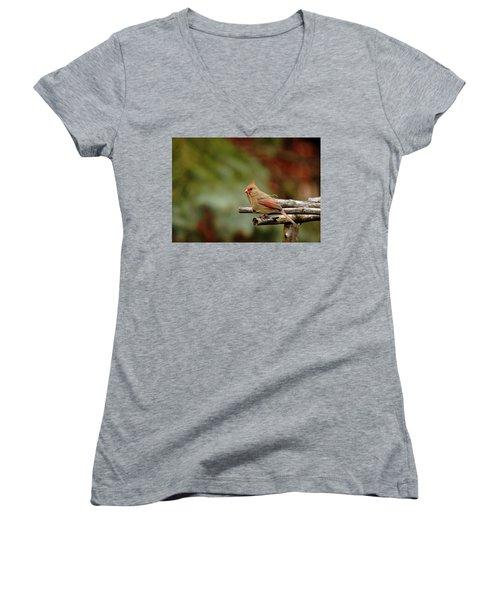 Building A Home Women's V-Neck T-Shirt (Junior Cut) by Debbie Oppermann