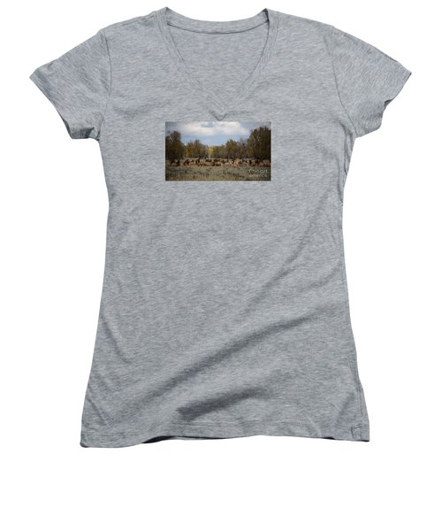 Bull Elk And Harem Women's V-Neck T-Shirt (Junior Cut) by Sandy Molinaro