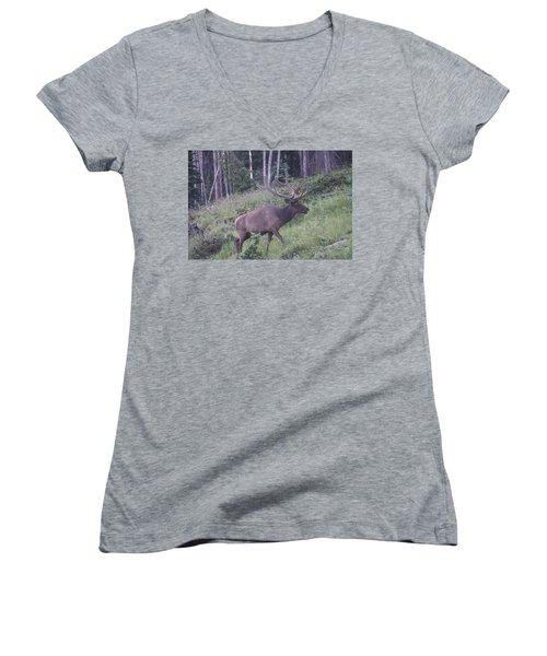 Bull Elk Rocky Mountain Np Co Women's V-Neck