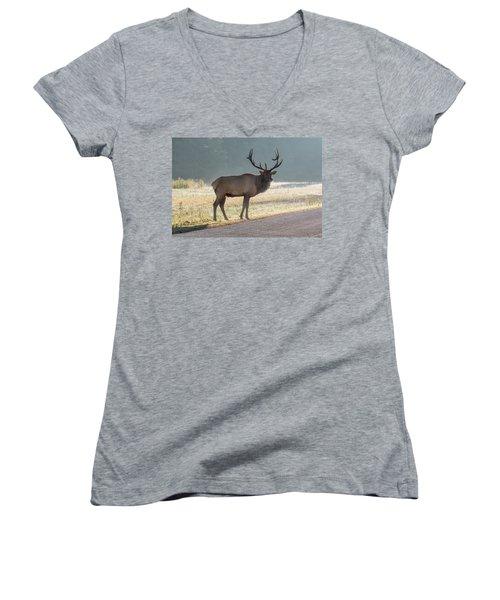 Bull Elk Watching Women's V-Neck
