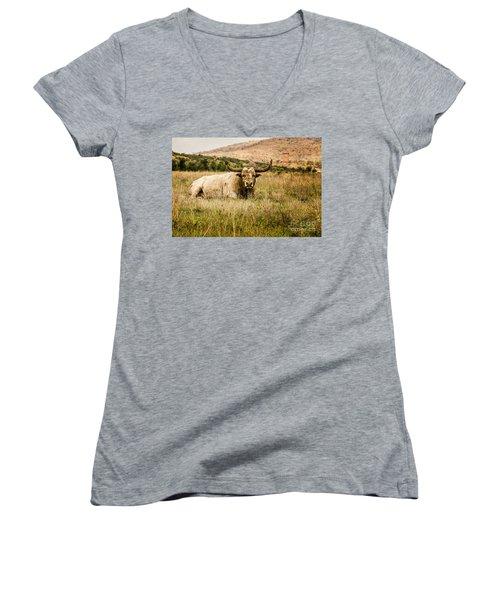 Bull Longhorn Women's V-Neck T-Shirt