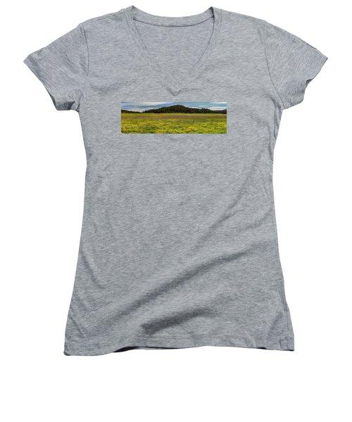 Bull Prairie Women's V-Neck T-Shirt (Junior Cut) by Leland D Howard