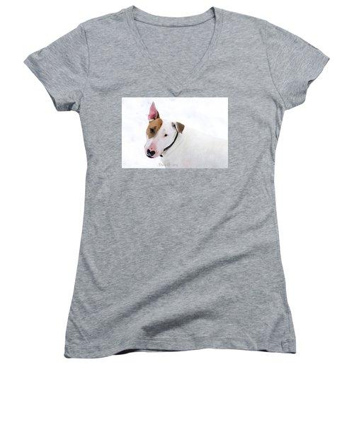 Bull Terrier Women's V-Neck T-Shirt