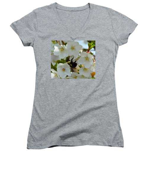Bumble Bee In Hiding Women's V-Neck